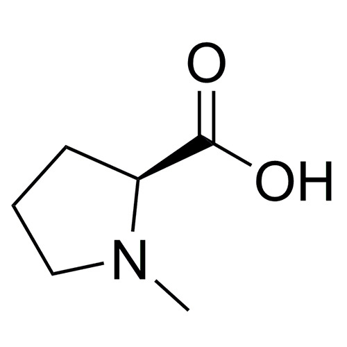 N-Methyl-L-proline