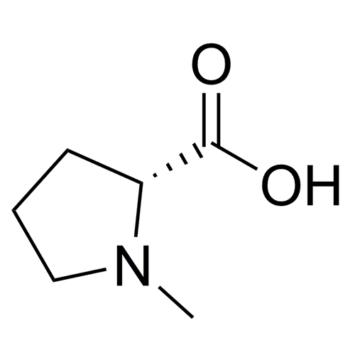 N-Methyl-D-proline